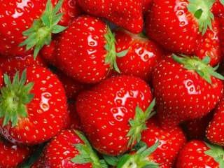 The most delicious strawberries at the seaside